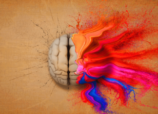 brain stimulation during meditation